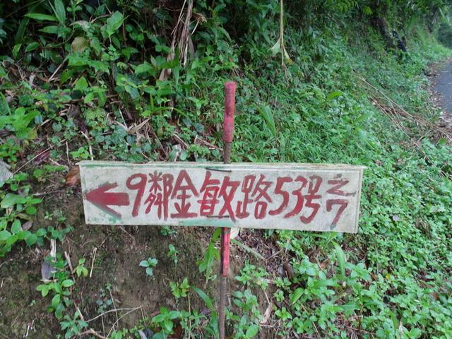 白雞山、雞罩山 (10).JPG