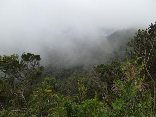 白雞山、雞罩山 (49).JPG