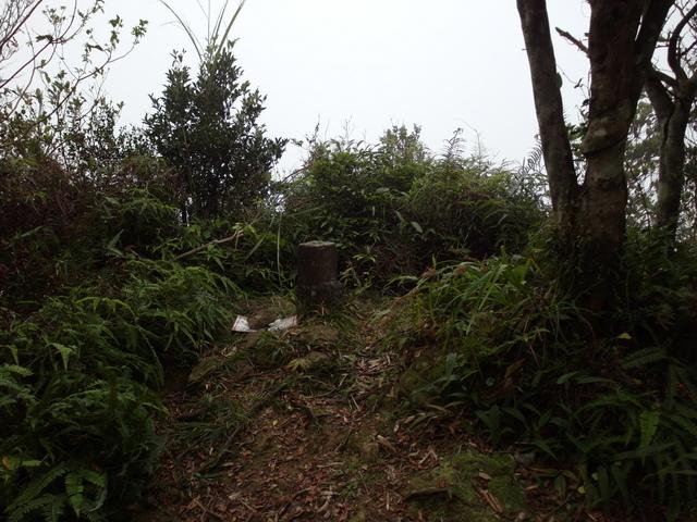 白雞山、雞罩山 (92).JPG