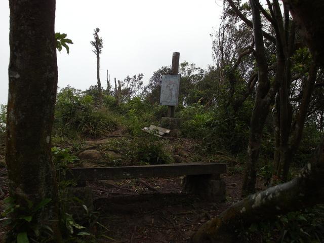白雞山、雞罩山 (116).JPG