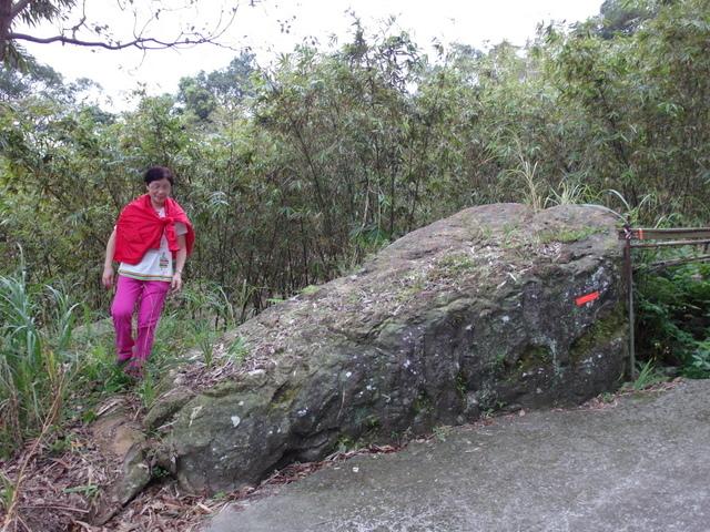 白雞山、雞罩山 (136).JPG