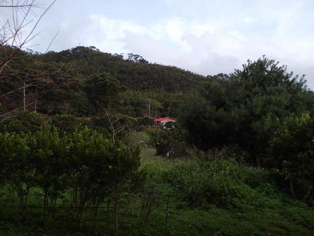 白雞山、雞罩山 (141).JPG