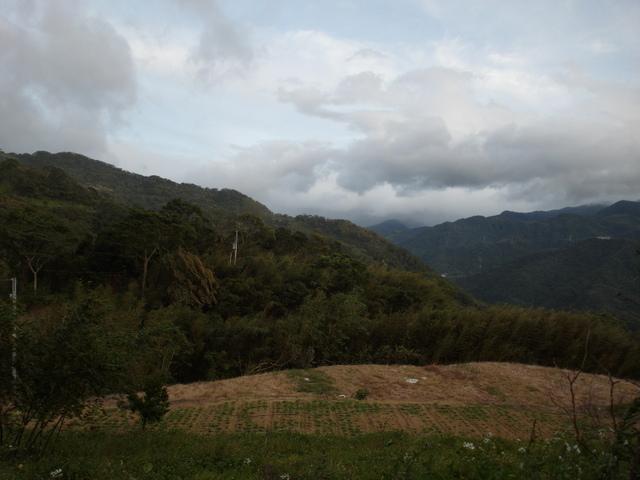 白雞山、雞罩山 (143).JPG