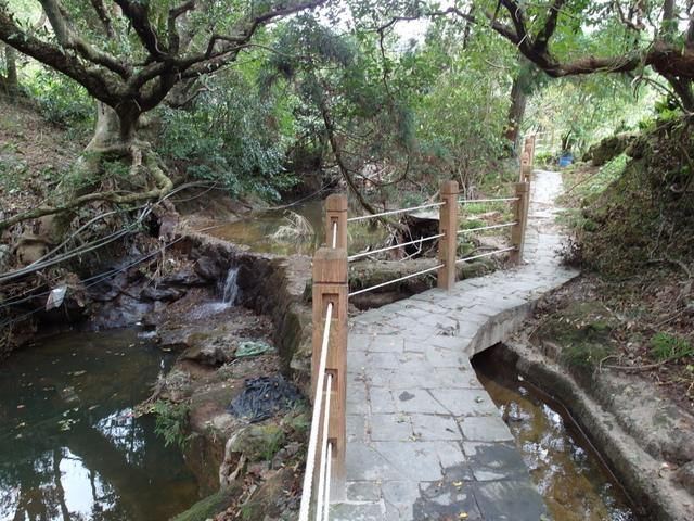 竹子湖步道  (35).JPG