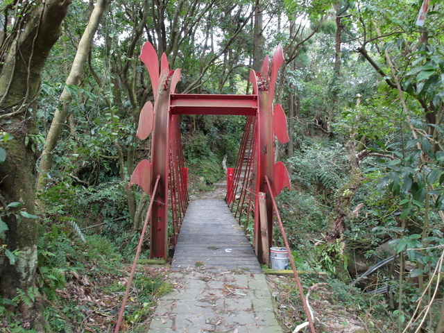 竹子湖步道  (40).JPG
