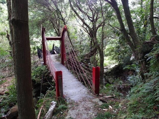 竹子湖步道  (43).JPG