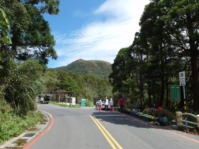 竹子湖步道  (53).JPG