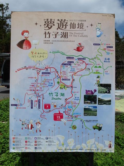 竹子湖步道  (54).JPG