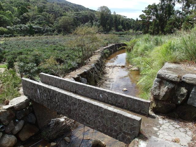 竹子湖步道  (59).JPG