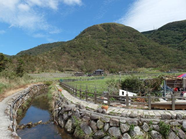 竹子湖步道  (60).JPG