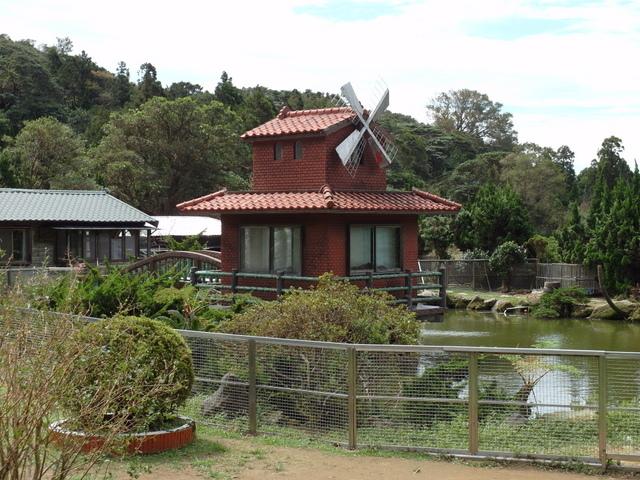 竹子湖步道  (63).JPG