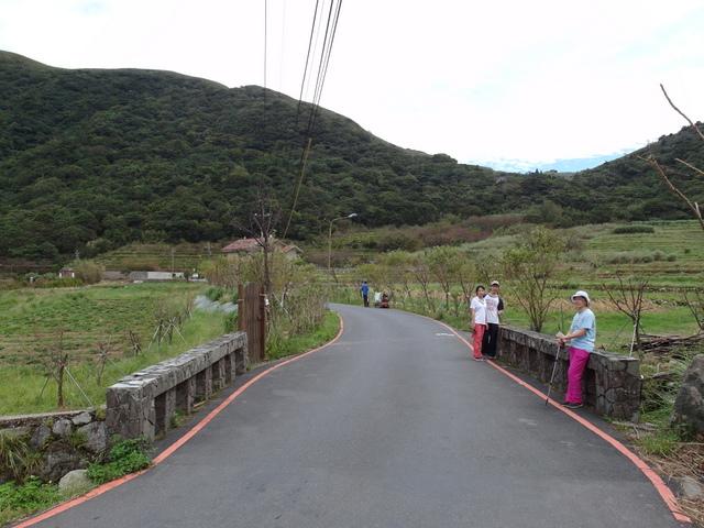 竹子湖步道  (65).JPG