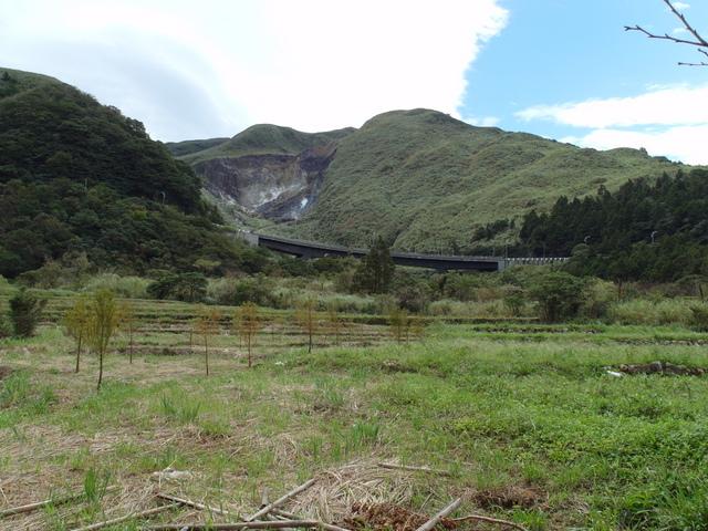 竹子湖步道  (67).JPG