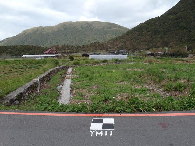 竹子湖步道  (68).JPG
