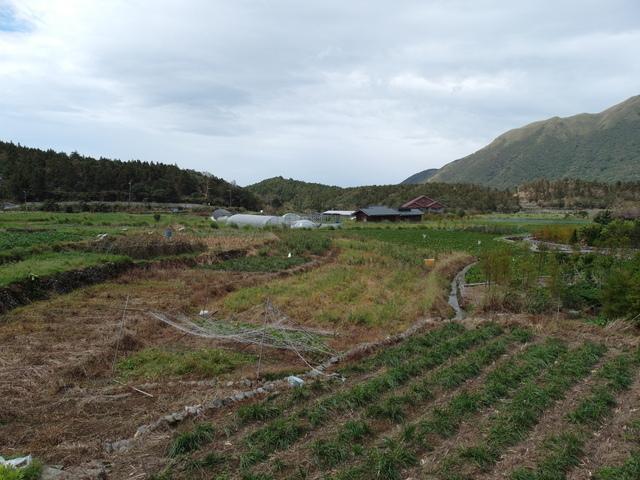 竹子湖步道  (70).JPG