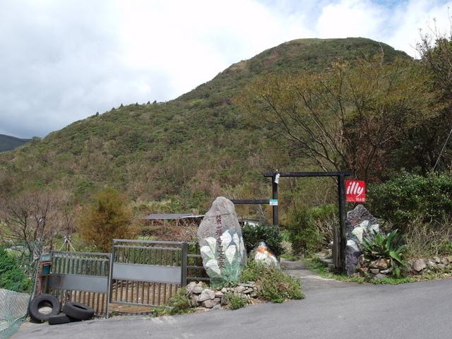 竹子湖步道  (71).JPG