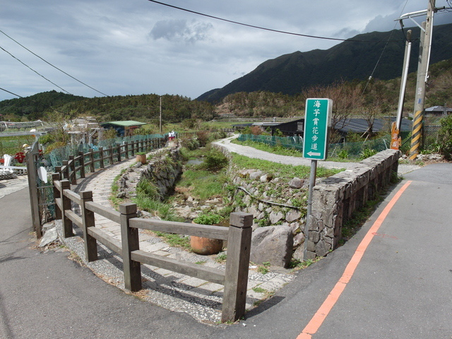 竹子湖步道  (74).JPG