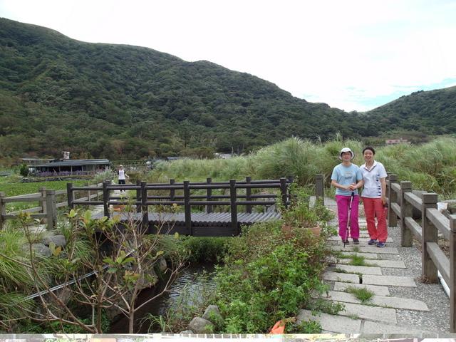 竹子湖步道  (83).JPG