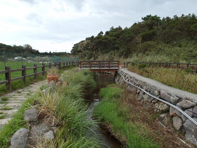 竹子湖步道  (85).JPG