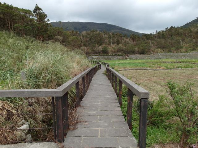 竹子湖步道  (86).JPG