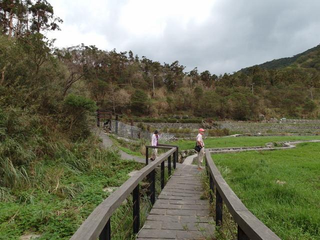 竹子湖步道  (87).JPG