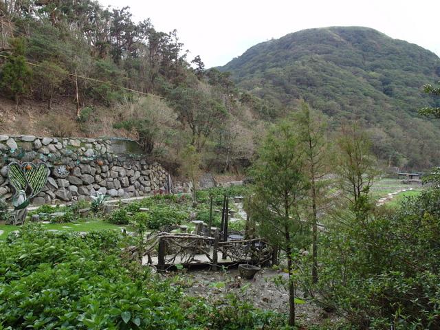 竹子湖步道  (90).JPG