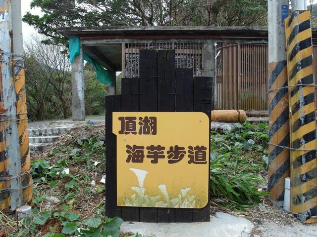 竹子湖步道  (92).JPG