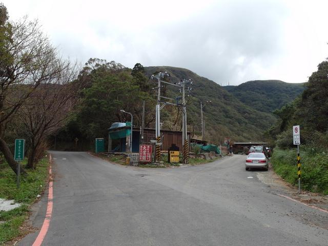 竹子湖步道  (93).JPG