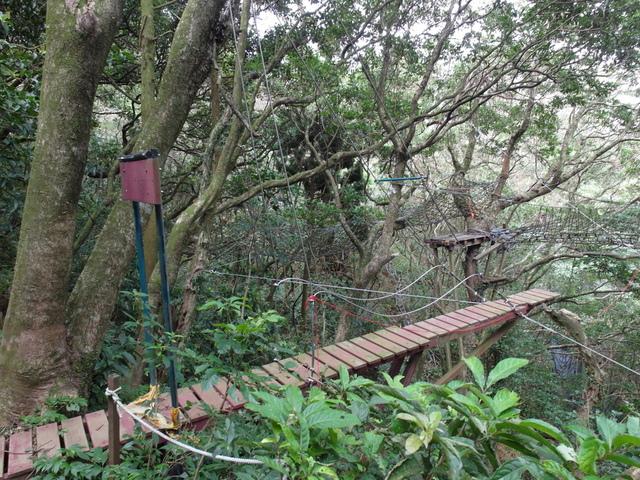 竹子湖步道  (95).JPG