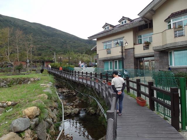 竹子湖步道  (108).JPG