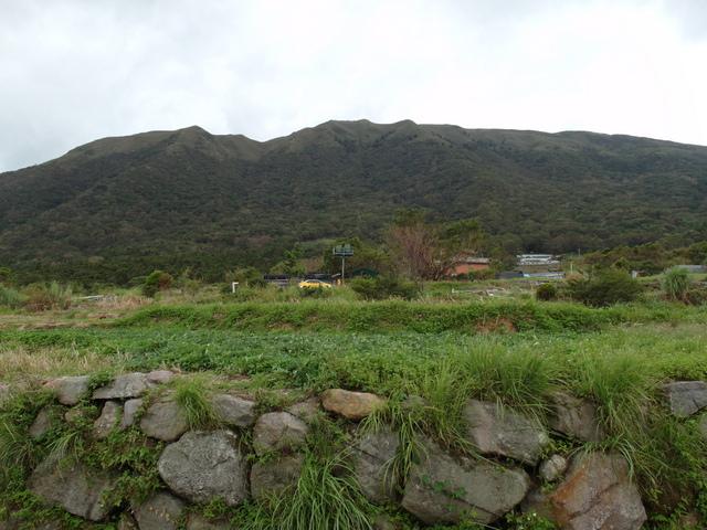 竹子湖步道  (112).JPG
