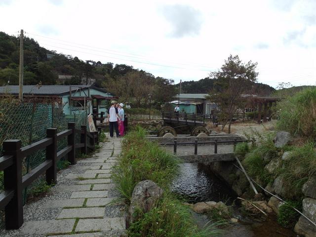 竹子湖步道  (113).JPG