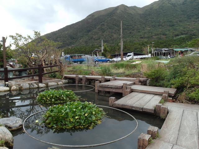 竹子湖步道  (118).JPG
