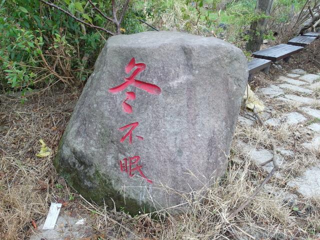 竹子湖步道  (119).JPG
