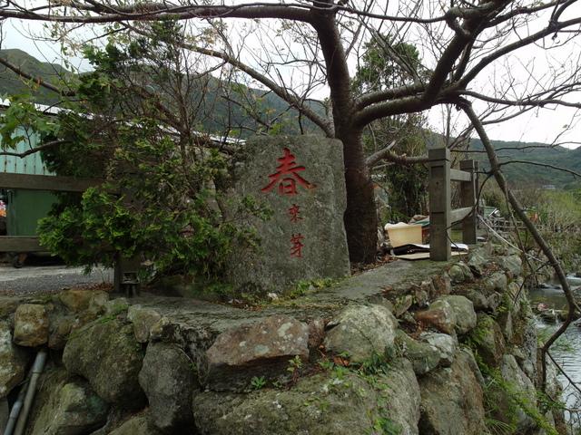 竹子湖步道  (124).JPG