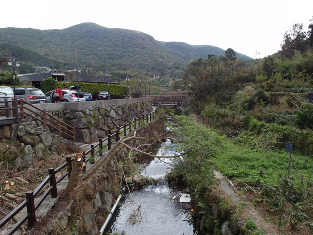 竹子湖步道  (129).JPG