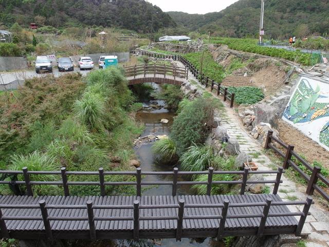 竹子湖步道  (130).JPG