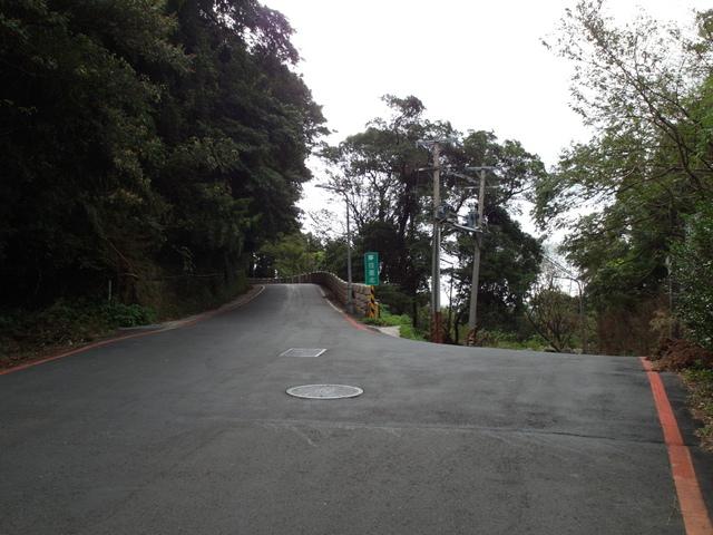 竹子湖步道  (131).JPG