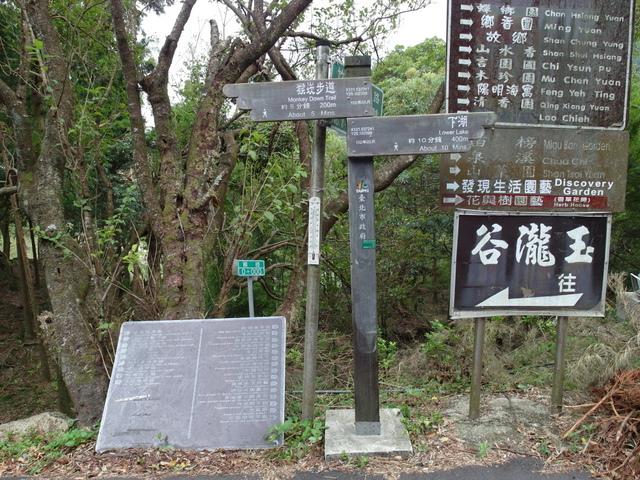 竹子湖步道  (132).JPG
