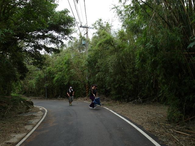 竹子湖步道  (133).JPG