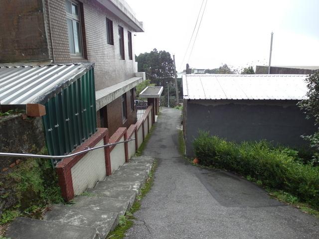 竹子湖步道  (177).JPG