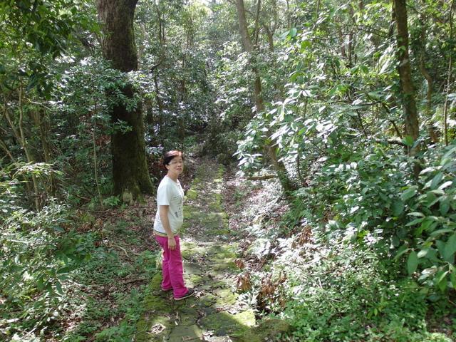 竹子湖步道  (191).JPG