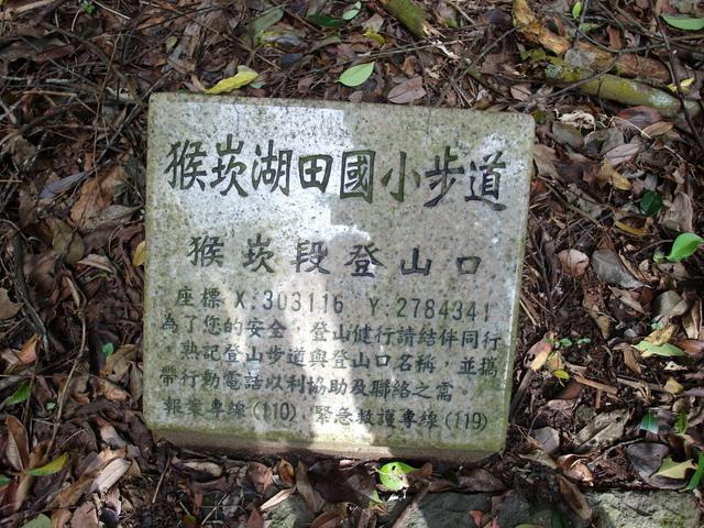 竹子湖步道  (204).JPG