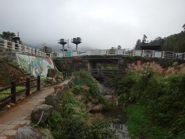 竹子湖步道  (240).JPG