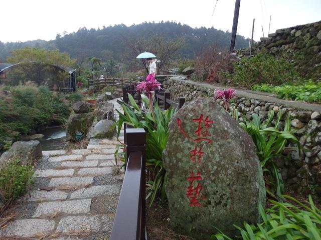竹子湖步道  (242).JPG