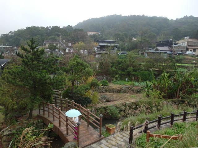 竹子湖步道  (245).JPG
