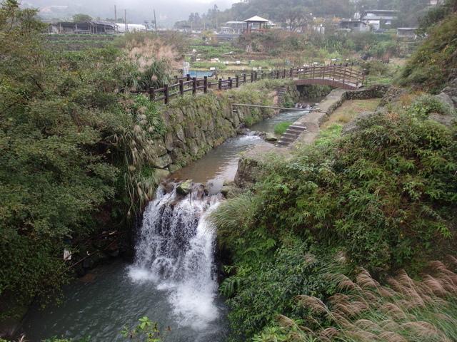 竹子湖步道  (255).JPG