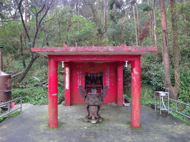 竹子湖步道  (258).JPG