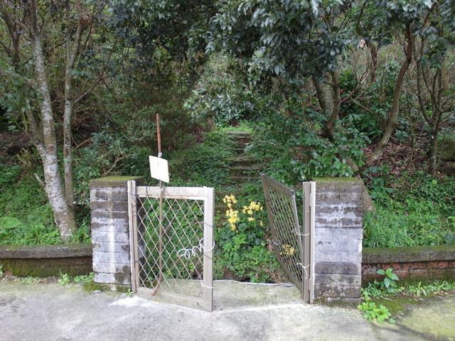 竹子湖步道  (272).JPG