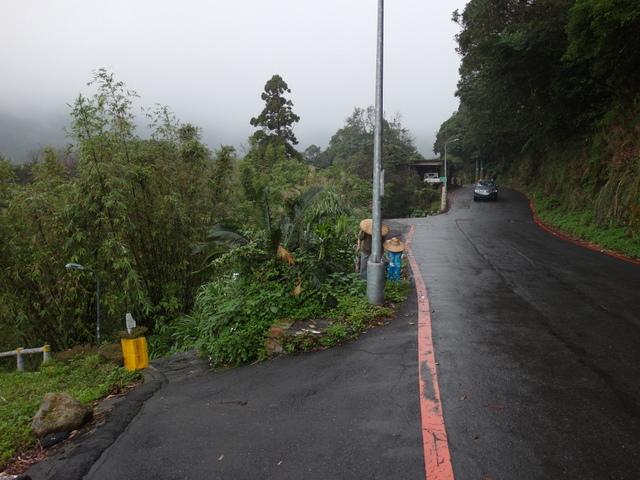 竹子湖步道  (278).JPG
